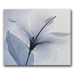 Delicata 2 (tablou 60x50cm)