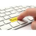 Servicii de securitate informatica si electronica